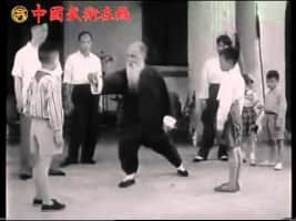 Wang Zi-Ping - Chinese martial arts practitioner