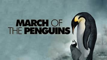 March of the Penguins - 2005 ‧ Family/Documentary ‧ 1h 26m