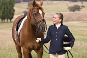 The Saddle Club - Television series